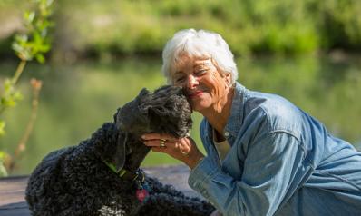 Seniors : comment choisir votre chien ?
