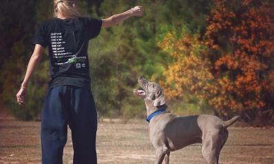 Garder la forme grâce à son chien