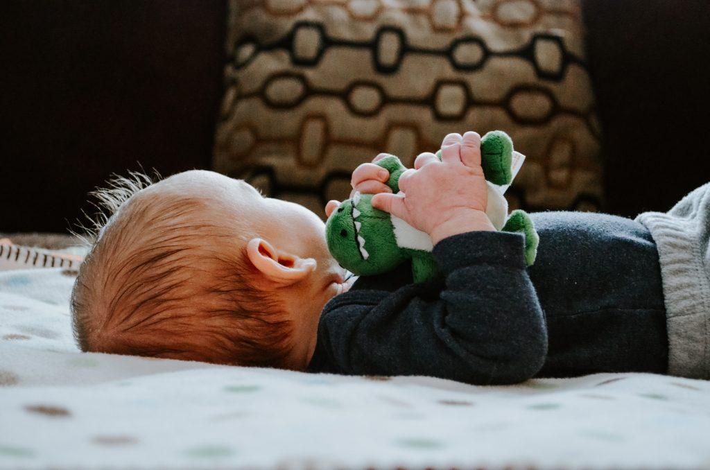 Un bébé avec une peluche de dinosaure